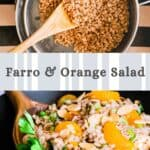 a colander of cooked farro with a black and khaki striped background and another photo of a black bowl of farro, mandarin oranges and parsley below
